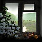 Windowstill by Igor Zenin