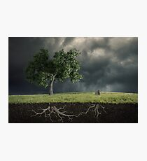 The soul of the nature Photographic Print