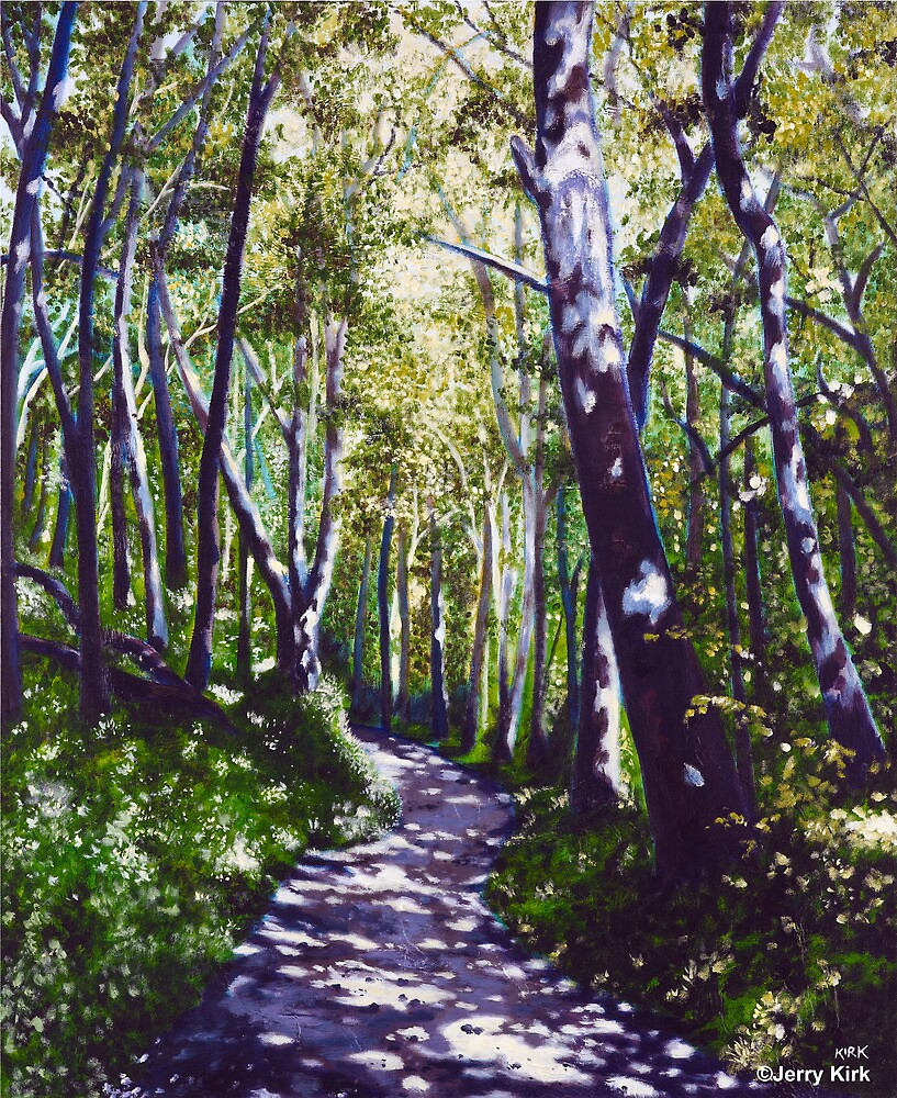 'Summer Woods (Moses Cone State Park, NC)' by Jerry Kirk