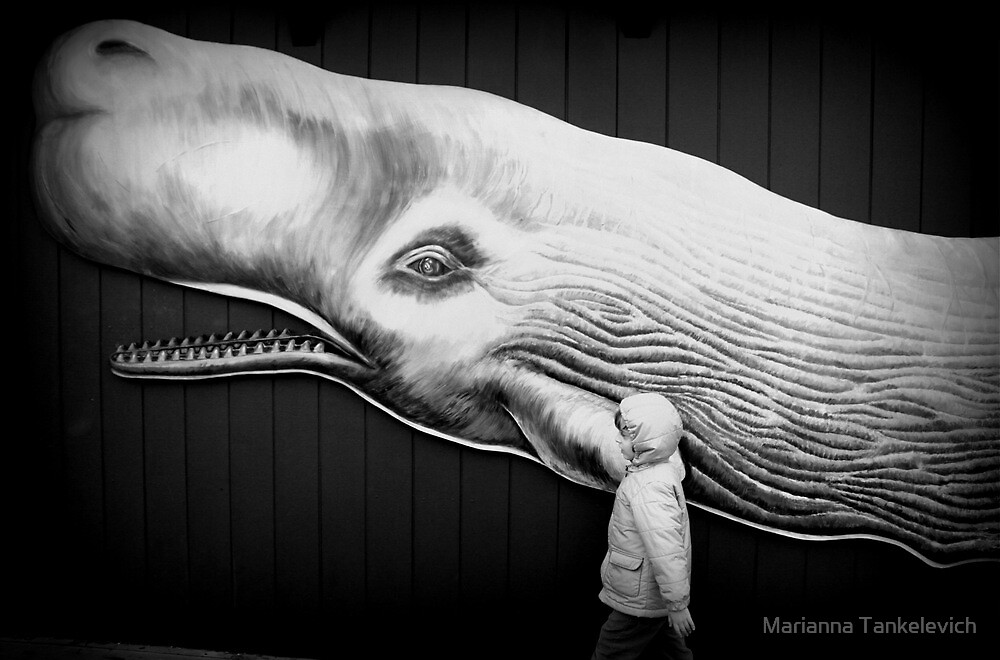 black and white with whale by Marianna Tankelevich