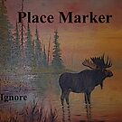 Place Maker # 9 by Tori Snow