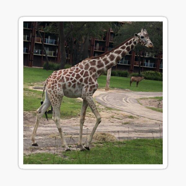 Giraffe on Savanna Sticker