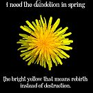 I Need the Dandelion in Spring by Serdd
