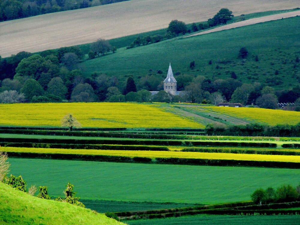 East Meon Church  by Caroline Anderson