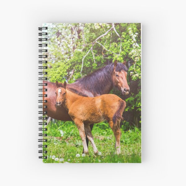 Mother horse with little foal Spiral Notebook