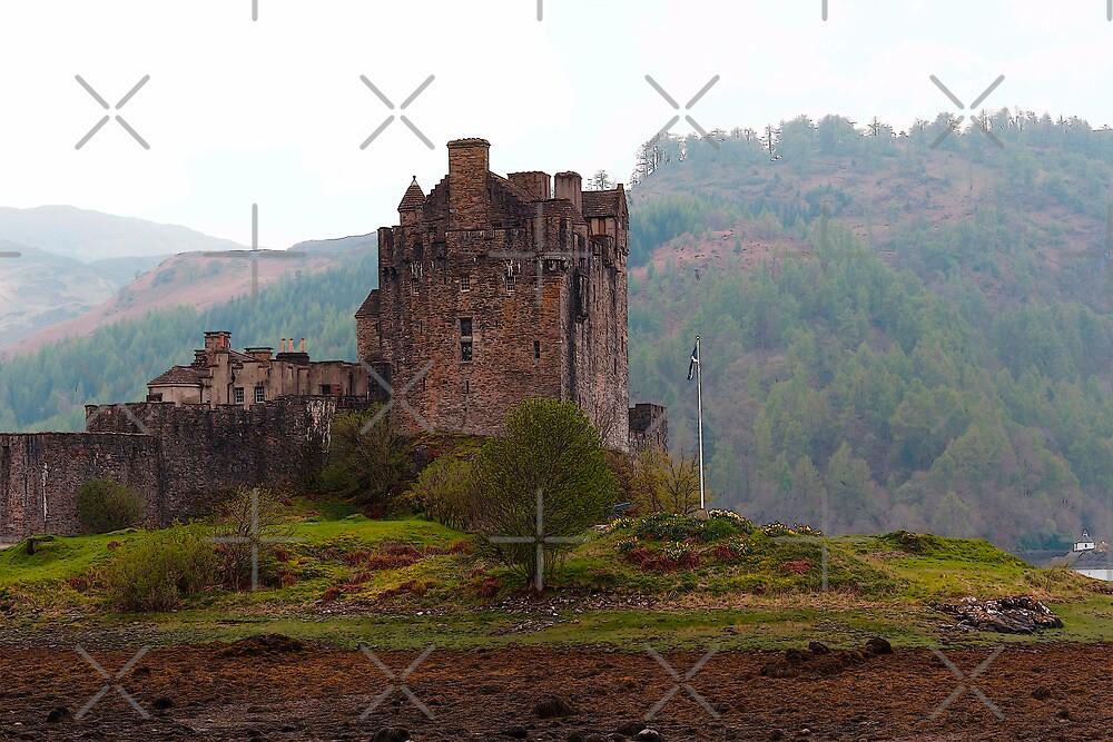 Cartoon - Structure of the Eilean Donan Castle by ashishagarwal74