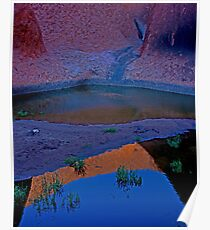 Reflections In The Billabong Poster