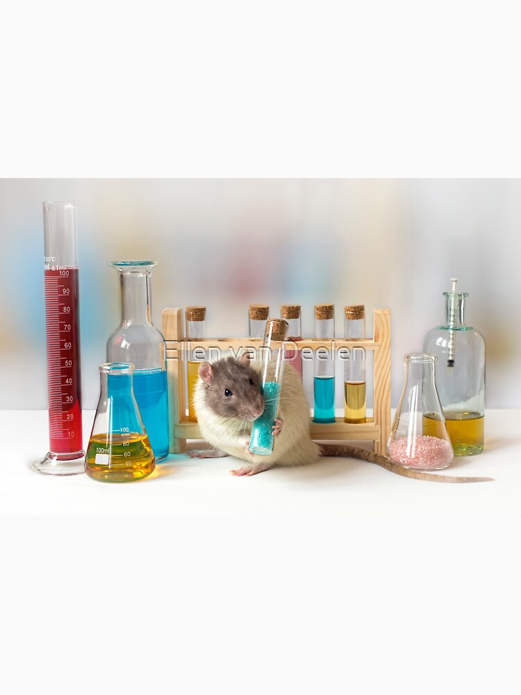 Working at the Laboratory by Ellen