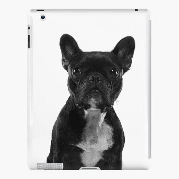 Sushi The Little French Bulldog Portrait iPad Snap Case