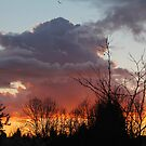 Showers Subsiding at Sundown by Wolf Read