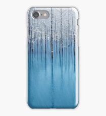 Lake With Frosty Trees iPhone Case/Skin