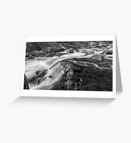 The Rivers Muscle Greeting Card