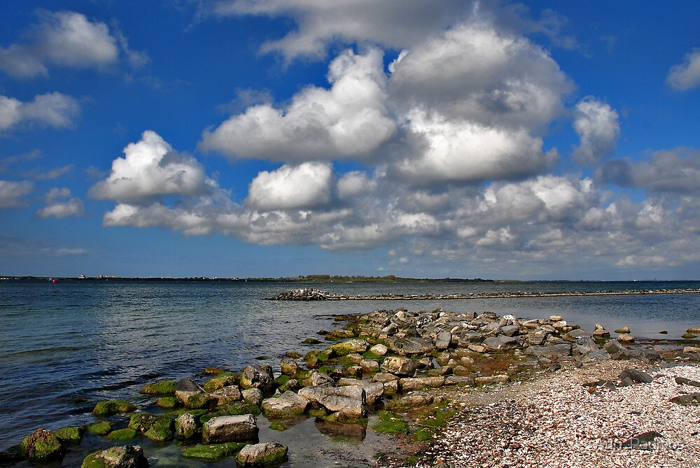 On the edge of Lake Grevelingen 2 by Adri  Padmos