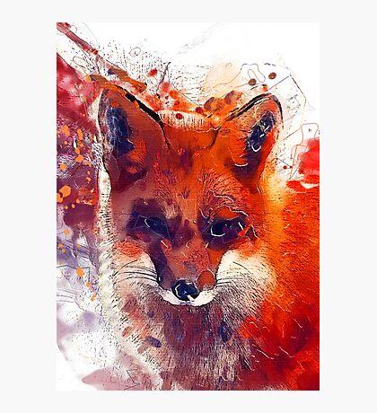 Foxy Photographic Print
