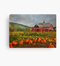 Country Pumpkins Canvas Print