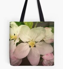 Pink / white Apple Flowers Tote Bag