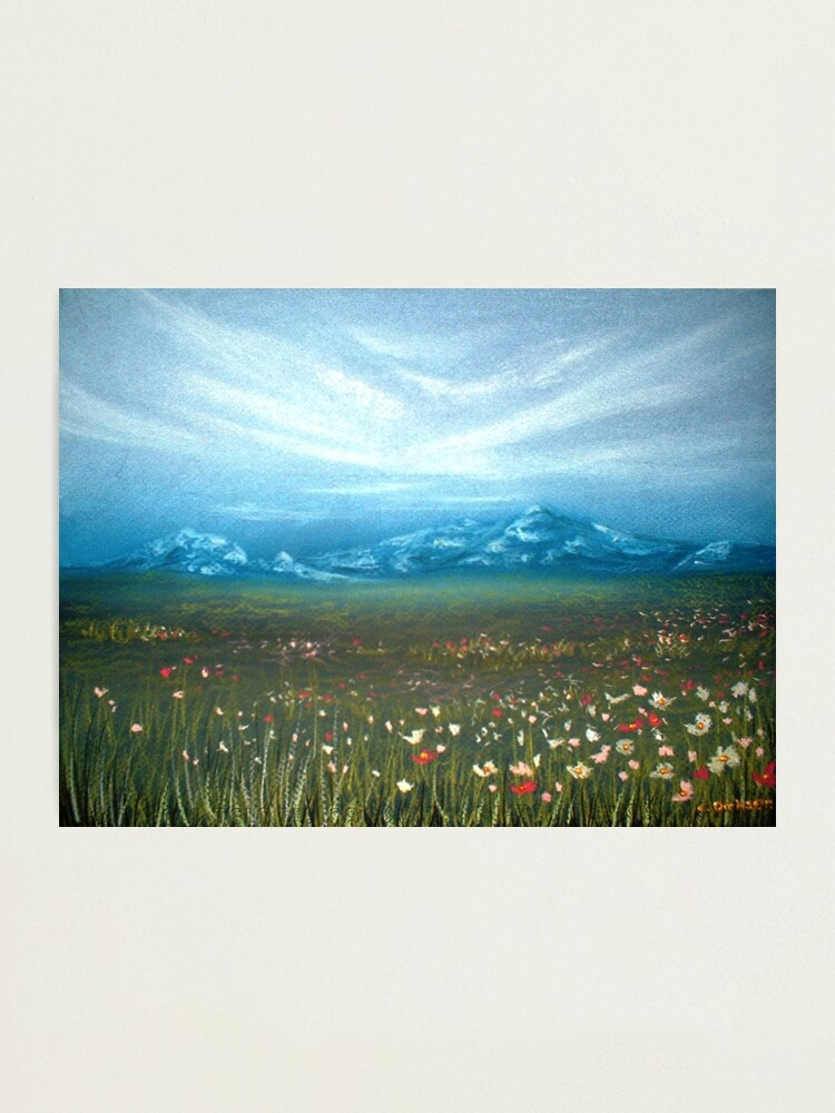 Alternate view of Field of Cosmos Photographic Print