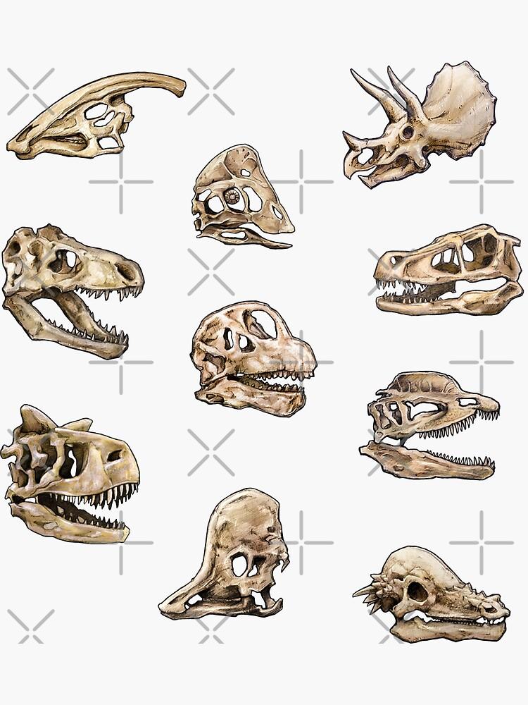 Dinosaur Skull Stickers Set by CassWArt
