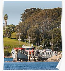 Jetty on Bluewater Drive, Narooma Poster