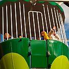 Ferris Wheel by liza1880