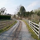 Following the gravel driveway.. by aimznabz