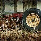 Big Wheels Keep On Churning by Amanda White