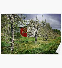 Barn in the Orchard Poster