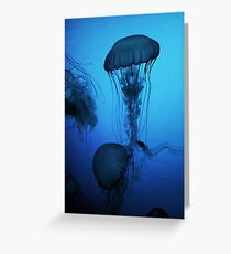 Portrait of a Jellyfish- Blue Greeting Card