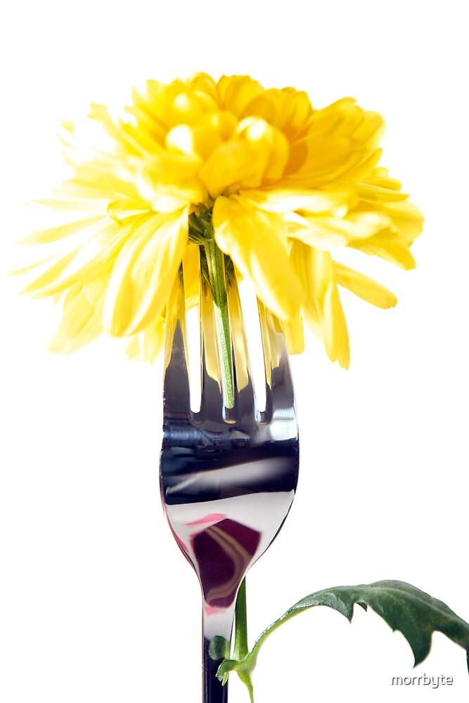 silver fork stuck into dahlia by morrbyte