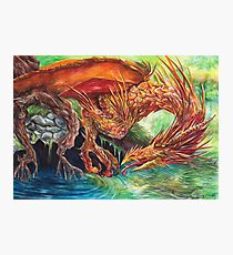Golden Dragon at the Pond Photographic Print