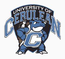 Univ. of Cerulean City (UCC) Aqua Jets | Baseball  Sleeve