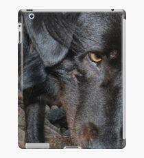Vinilo o funda para iPad Black Dog