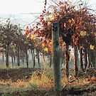 Autumn Vine by Lynda Heins