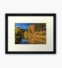 Autumn Along The Susan River Framed Print
