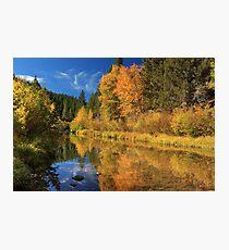 Autumn Along The Susan River Photographic Print