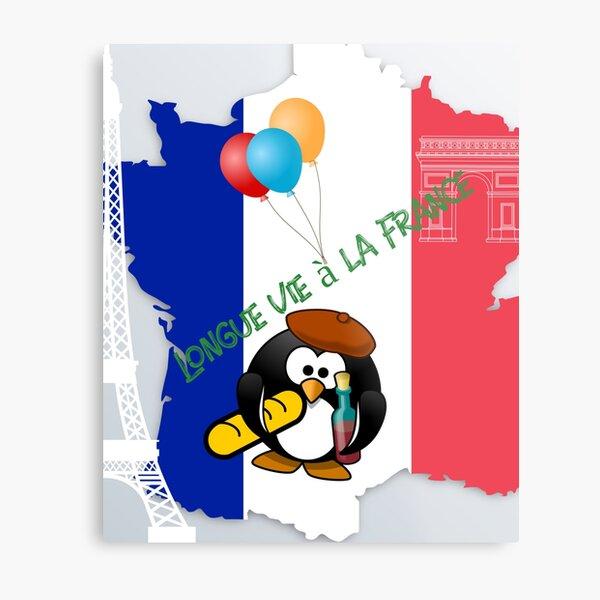 Flag of the three colors sticker,laptop sticker Metal Print