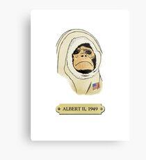 Albert II: The first monkey in space Metal Print