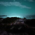 MY VIEW OF THE OCEAN by leonie7