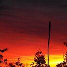 Aussie Dawn... by debsphotos