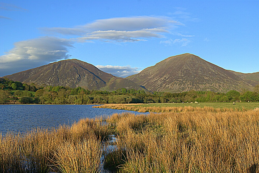 Loweswater Fells by Lou Wilson