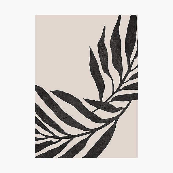 Black and Beige Photographic Print