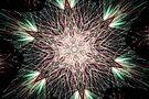 Fireworks Fractal by Tori Snow
