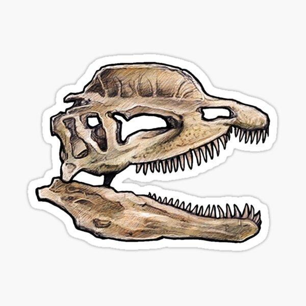 Dinosaur Skull Diloposaurus Sticker Sticker