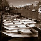 River Dee Rowing Boats Chester by mlphoto