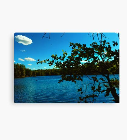 Black Flies and Mosquitos  Canvas Print