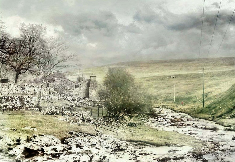 By Oughtershaw Beck ~ North Yorkshire by patrixpix