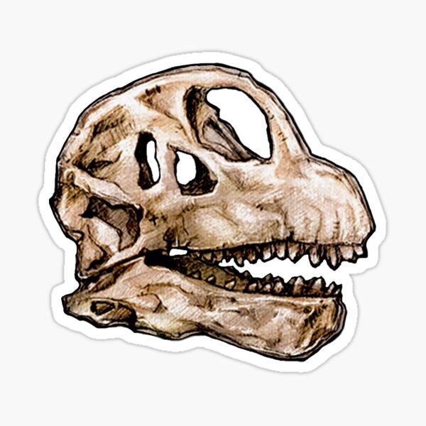 Dinosaur Skull Camarasaurus Sticker Sticker