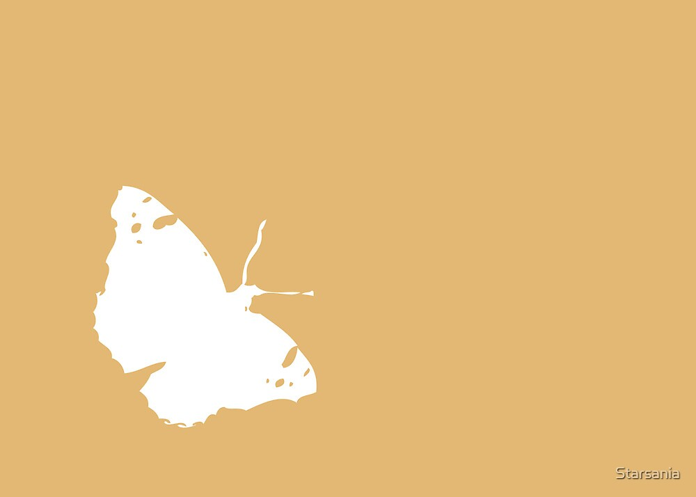 White Butterfly on Orange by Starsania