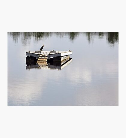 Just Floating  Photographic Print