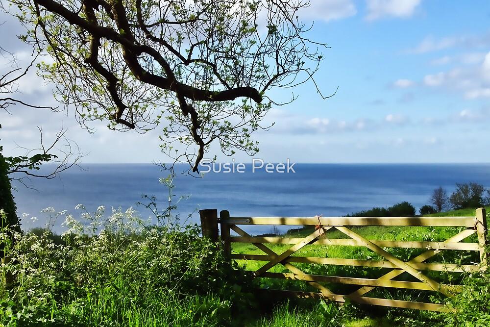 Along The Coastal Path by Susie Peek